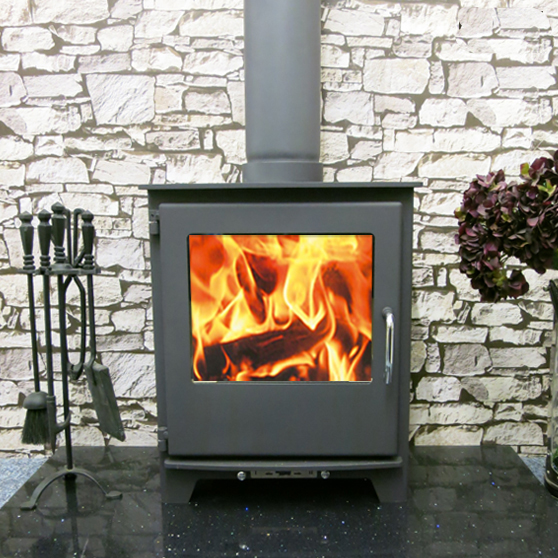 Neo wood burning Multi fuel stove