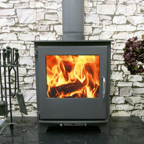 Neo wood burning Multi fuel stove